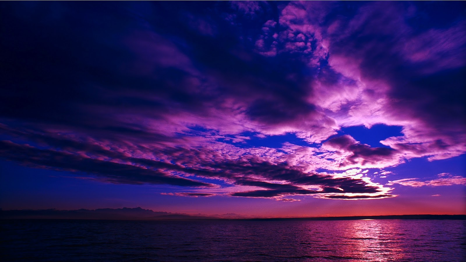 purple wallpaper 3 - photo #41