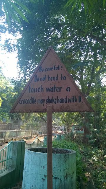 Crocodiles, Odisha, Mugger