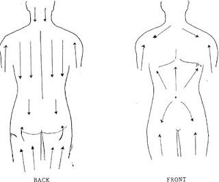 The Holistic Body Care Blog: Detox & Brush Winter Skin