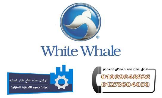 خدمة عملاء وايت ويل