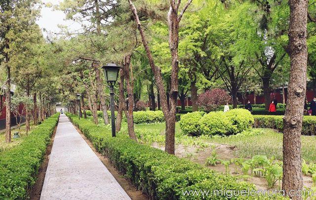 Jardines-Yong-He-Gong