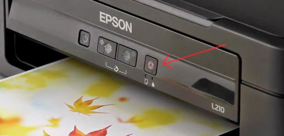 epson reset printer button