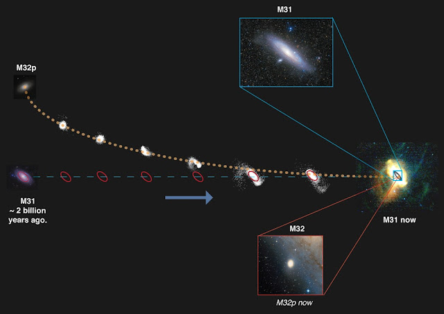 The Andromeda galaxy cannibalized the Milky Way's 'sibling' 2 billion years ago