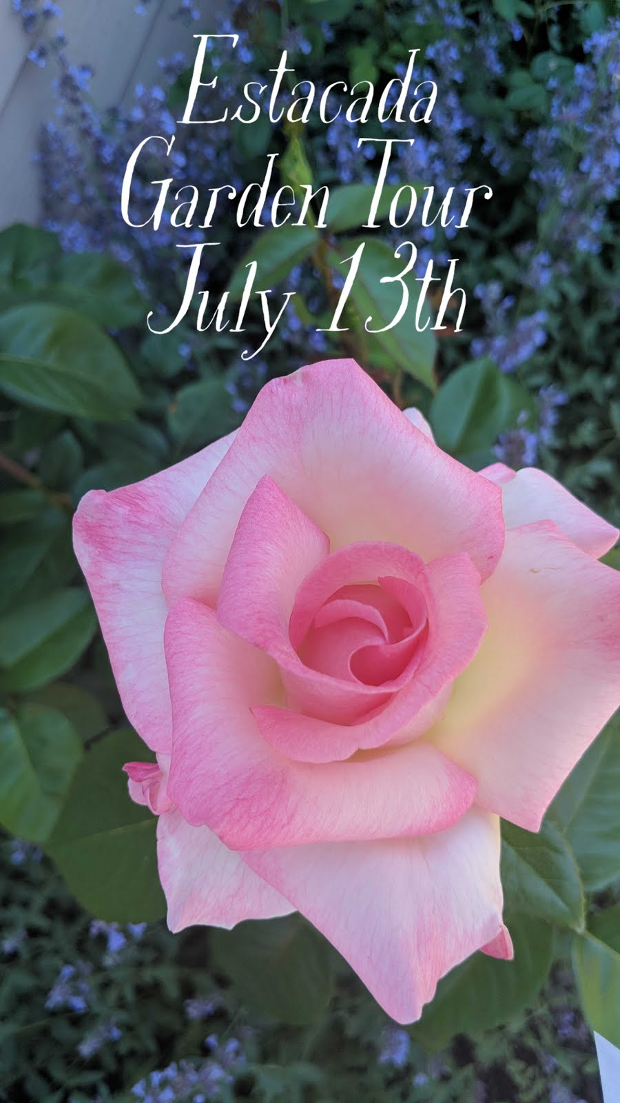 ESTACADA GARDEN TOUR - JULY 13TH   10AM - 4PM
