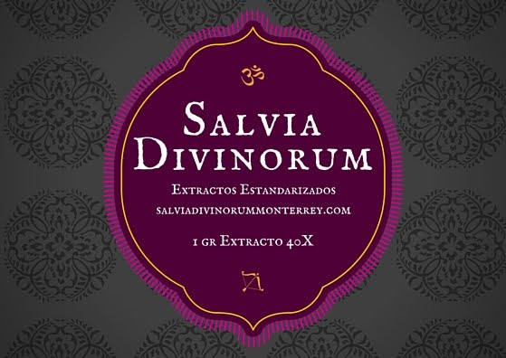 Extracto de Salvia Divinorum 40X