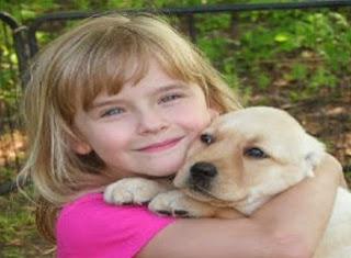Cane torna a casa da solo dopo tre mesi