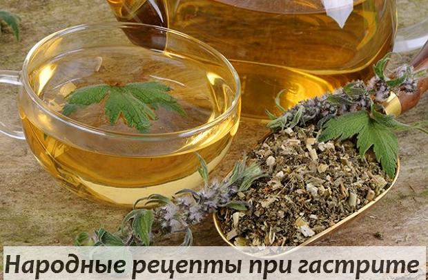 Травы при болезнях желудка и кишечника