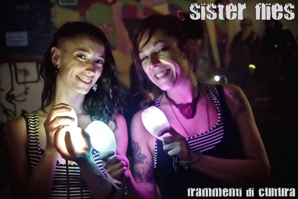 Sister Flies