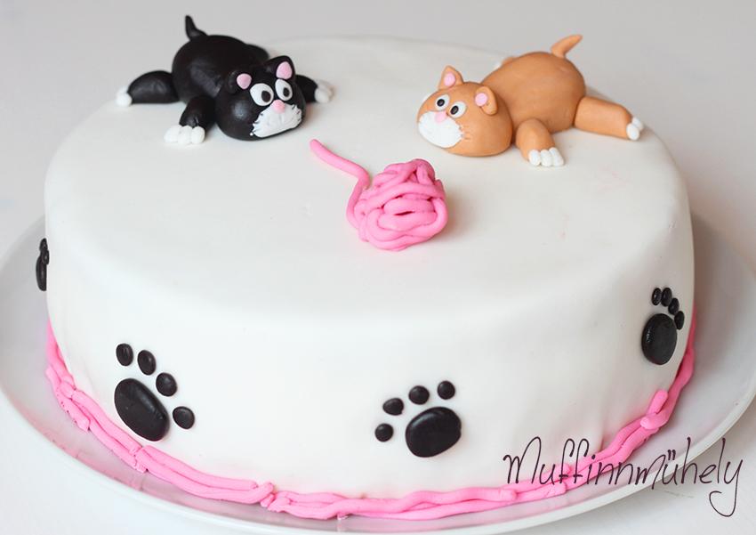cicás torta képek Cicás torta cicás torta képek