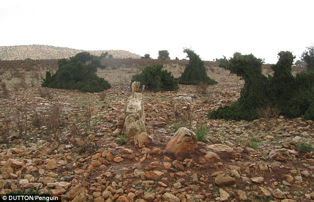 Un experto en informática alemana afirmó que los restos de la ciudad perdida de la Atlántida pueden no estar bajo el mar, sino que se encontrarían la costa de Marruecos, en donde un fuerte tsunami arrasó con la antigua metrópolis. En la foto los posibles restos encontrados.
