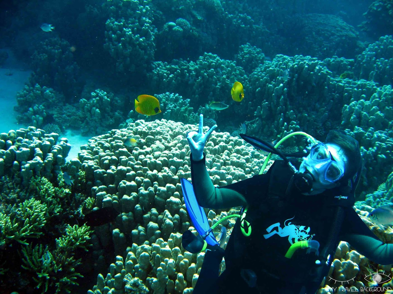 My Travel Background : 8 lieux où plonger dans le monde, Egypte