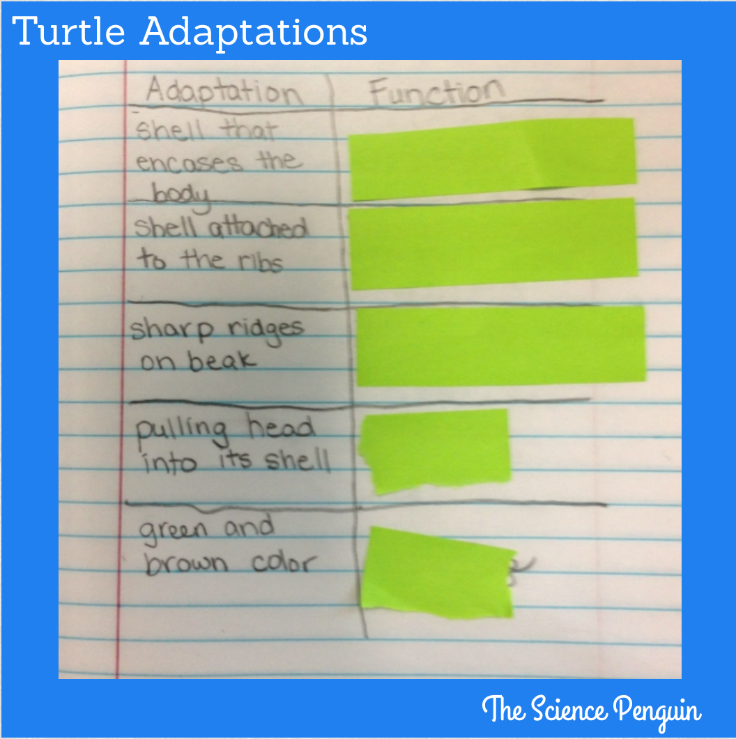 Science Penguin S Science Plans Adaptations