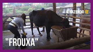 A Fazenda 12 – Tays com medo da vaca – Jojo esclarece assunto com Raissa – Lidi Lisboa dá conselho