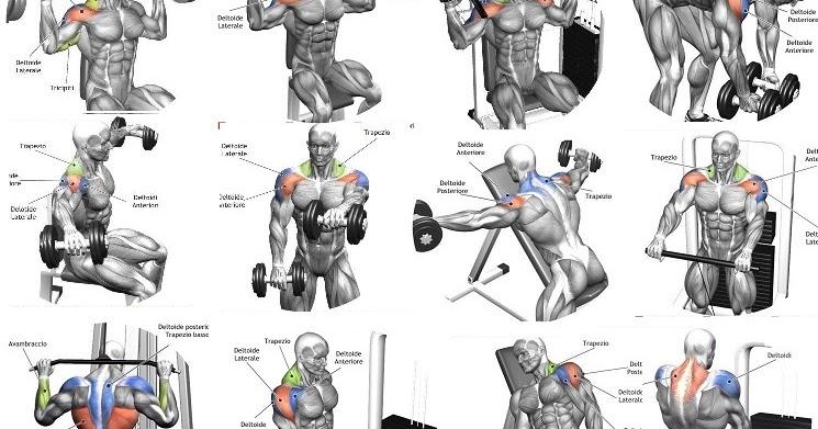 Best Exercises To Build Big Legs