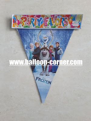 Bunting Flag Frozen