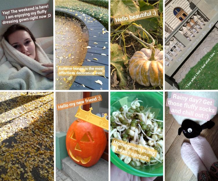october instagram stories, halloween instagram stories, mason jar sprouts growing, czech republic halloween, georgiana quaint, bullet journal 2019