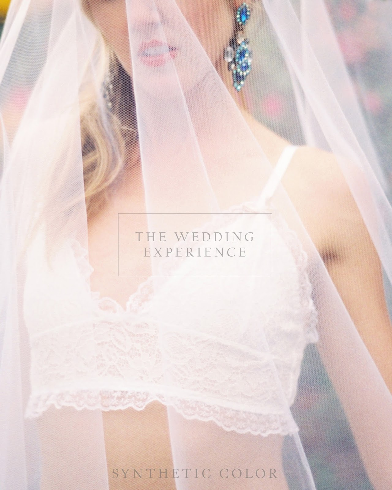 The wedding planning guide synthetic color the wedding planning guide junglespirit Image collections