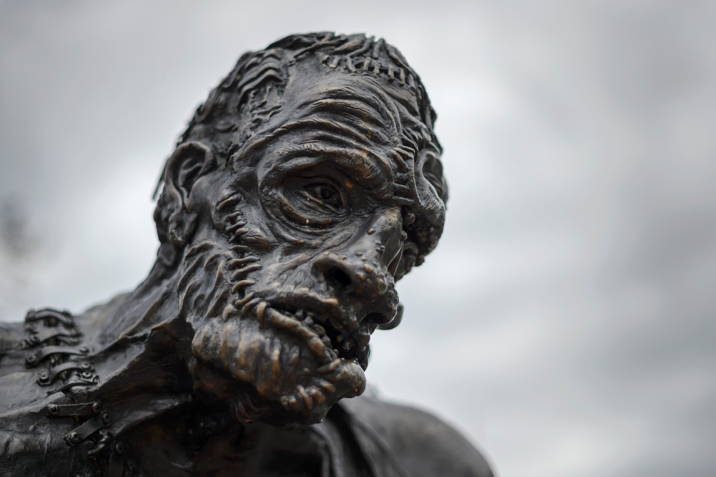 the dangers of loneliness to humans in frankenstein a novel by mary shelley Solitude is a prevalent theme in the novel frankenstein or the modern prometheus by mary shelley in the novel, all of the characters suffer from solitude or.