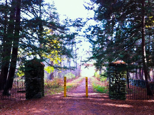 The Mattatuck Trail through White Memorial Foundation