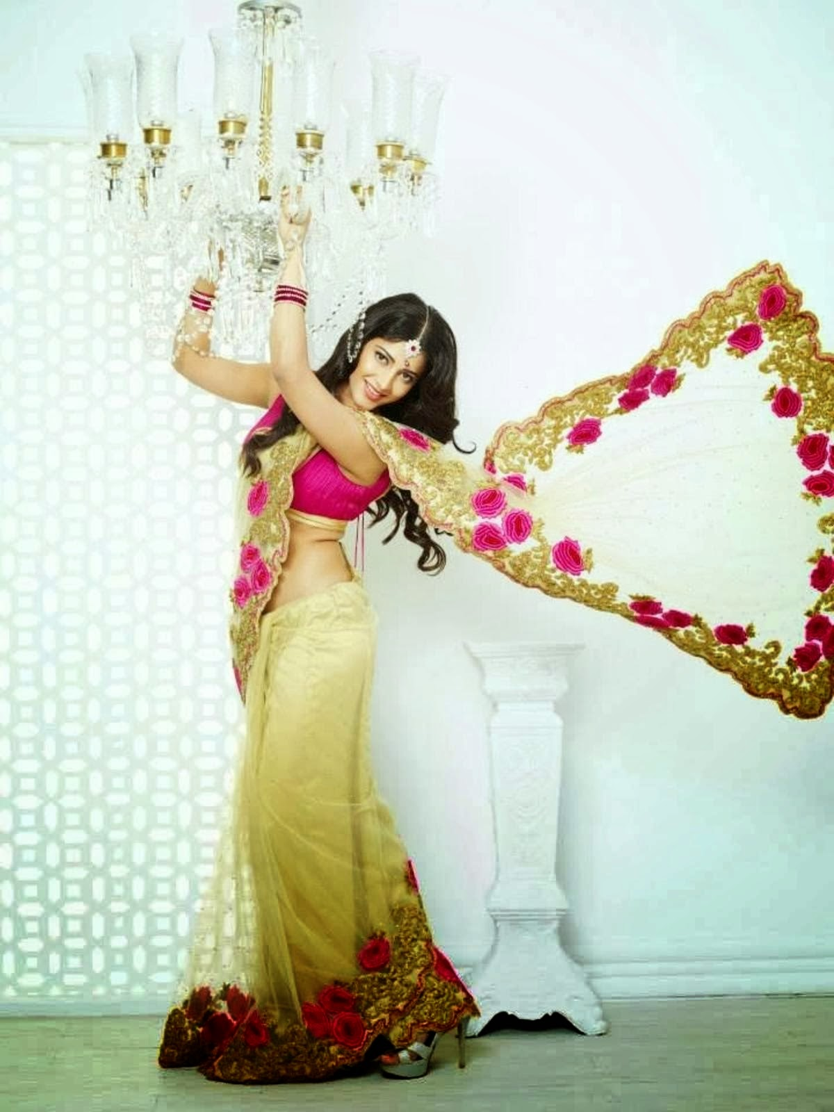 Shruti Haasan showing off her curves in saree