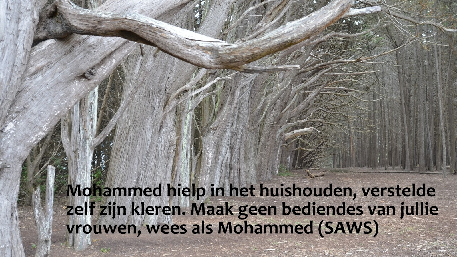 Citaten Over De Winter : Citaten en wijze woorden uit de islam wees als mohammed