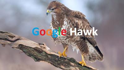 2 Cara Mengatasi Algortima Google Hawk [Rekomendasi]