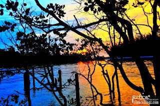 Pantai Bagan Lalang Sepang