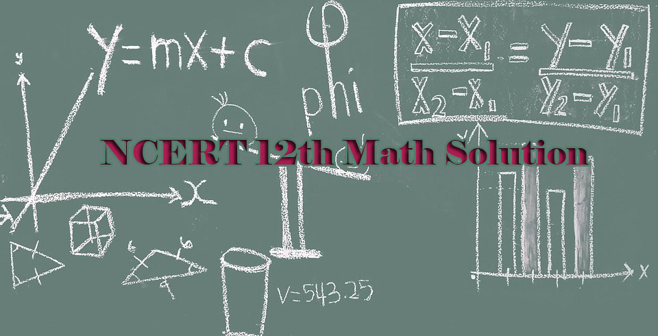 Download NCERT 12th Math Solution - Pdf Archive