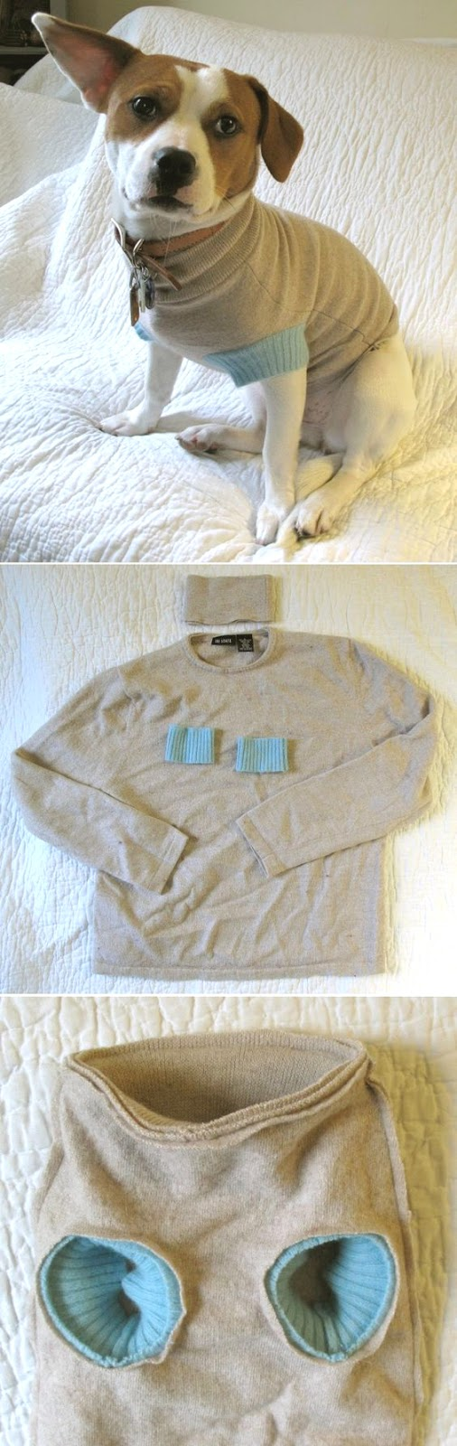 4 diy dog sweater and coat patterns handy homemade. Black Bedroom Furniture Sets. Home Design Ideas