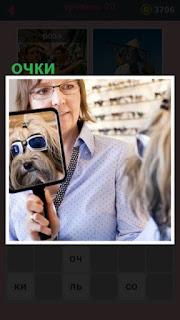 в магазине для собаки подбирают очки, которая смотрит на себя в зеркало