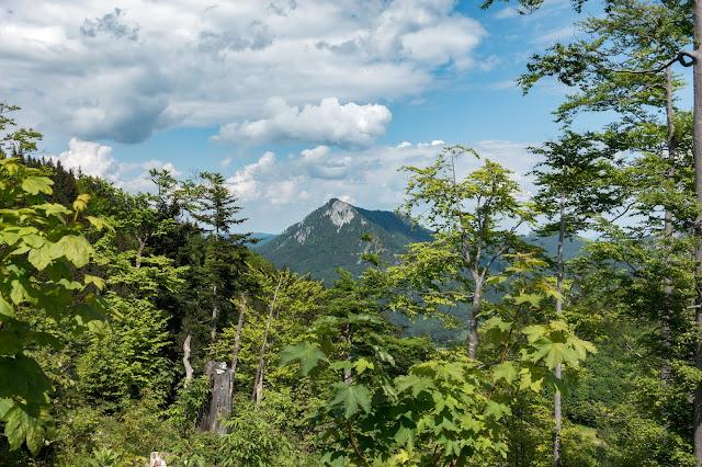 Von Hof bei Salzburg auf den Filbling  Wandern in der FuschlseeRegion 11