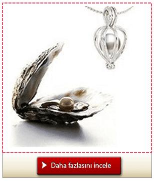 İstiridye İçinden Çıkan Gerçek İncili Gümüş Kolye