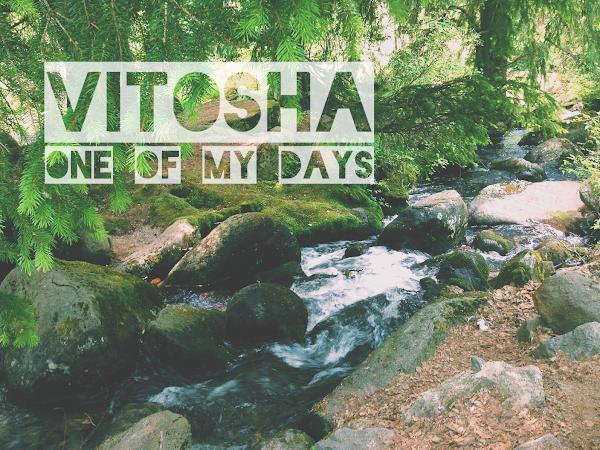 One Of My Days: Разходка на Витоша
