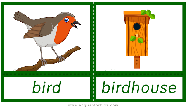 Animal homes and habitats -- bird - birdhouse -- printable flashcards for English learners