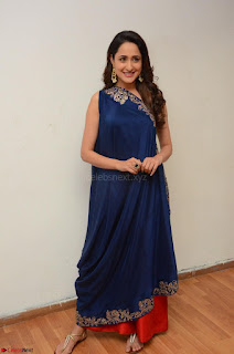 Pragya Jaiswal in beautiful Blue Gown Spicy Latest Pics February 2017 049.JPG