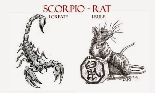 Scorpio Rat Personality Traits Quotes