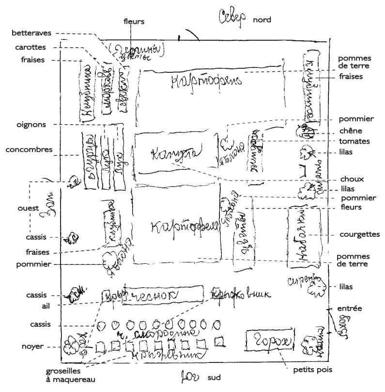 Plan Maison Plain Pied 150m2 Gratuit