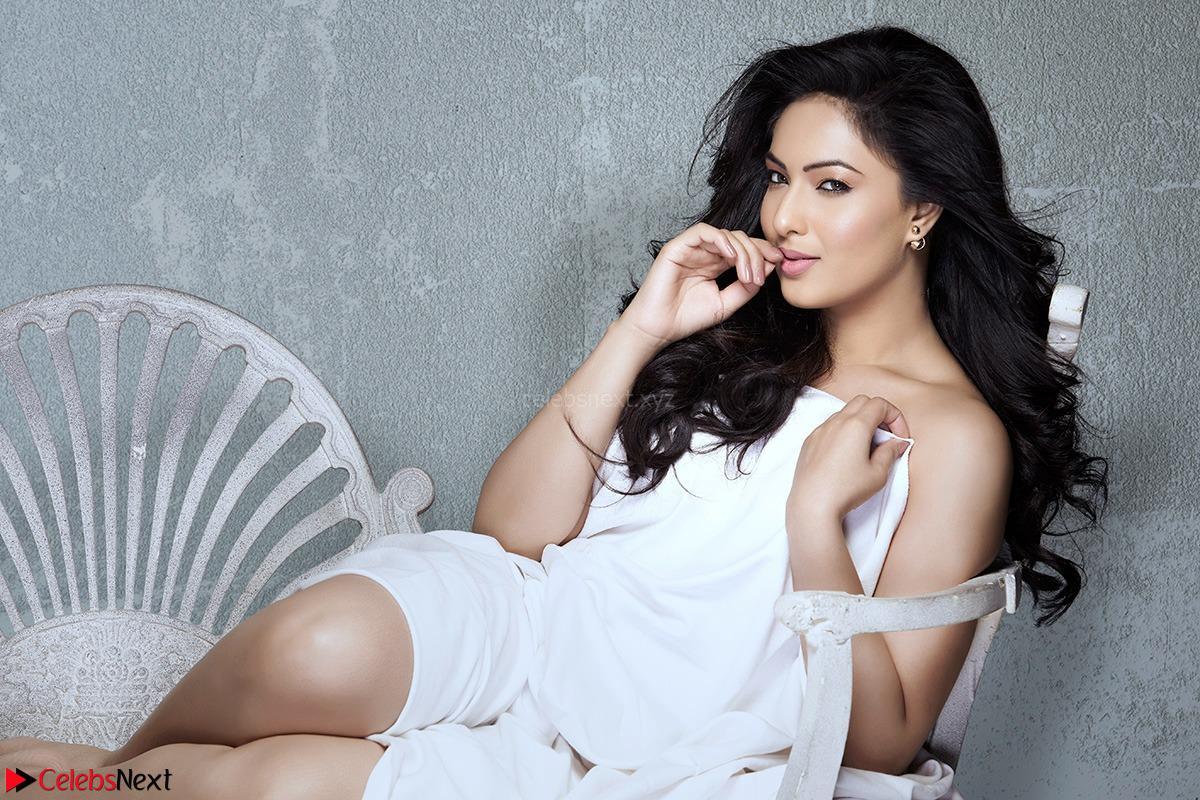 Nikesha Patel looks super cute in white dress must see