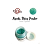 http://www.artimeno.pl/pl/shiny-powders-pigmenty/6022-13arts-shiny-powder-green-blue-niebiesko-zielony-22ml.html