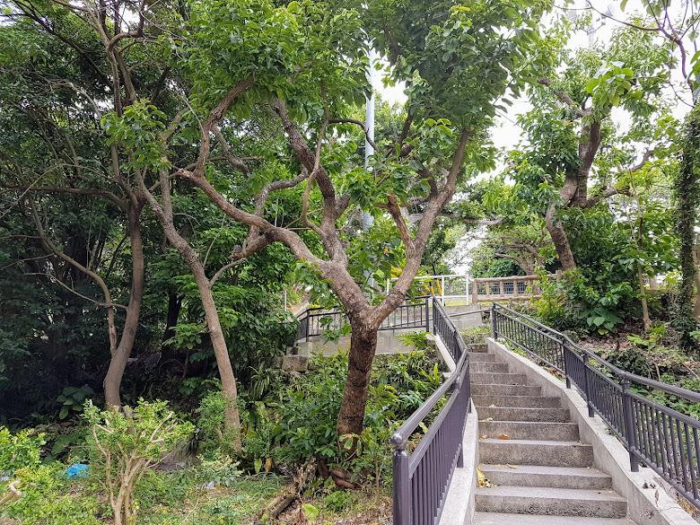 沿著樓梯爬上山丘頂