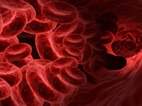 Blood Disorders - Polycythaemia: Symptoms and Causes