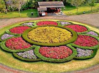 Wisata Taman Bunga Nusantara