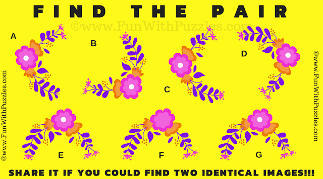 This is Find the Pair Picture Puzzle in which you have to find the matching pieces among the given 7 puzzle images