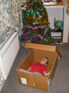 cardboard box den for kids
