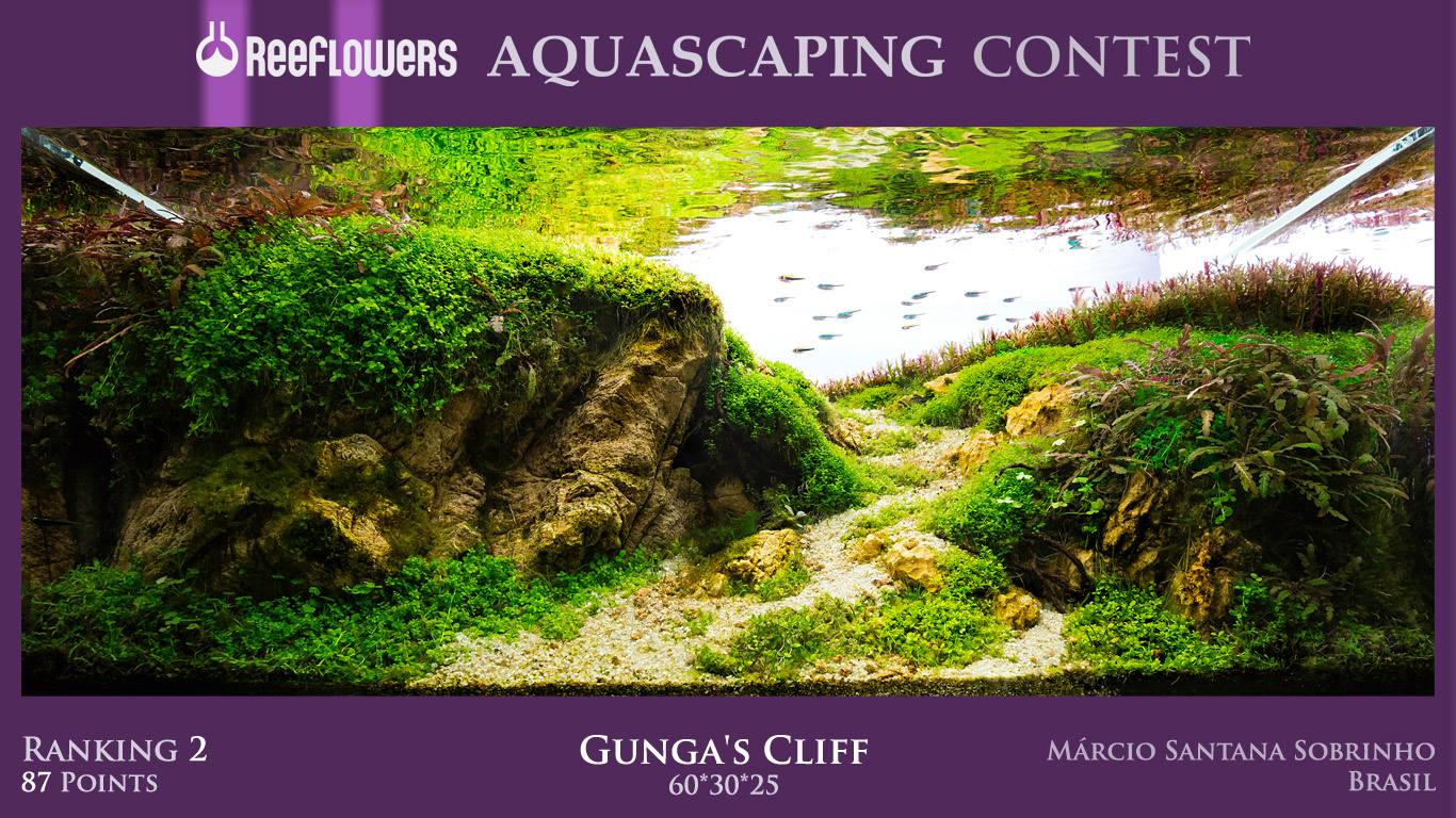 Cuộc thi thủy sinh Reffflowers Aquascaping Contest 2017 - hạng 2