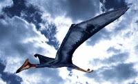 archaeopteriz il dinosauro sapeva volare?