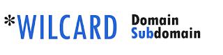 wildcard domain