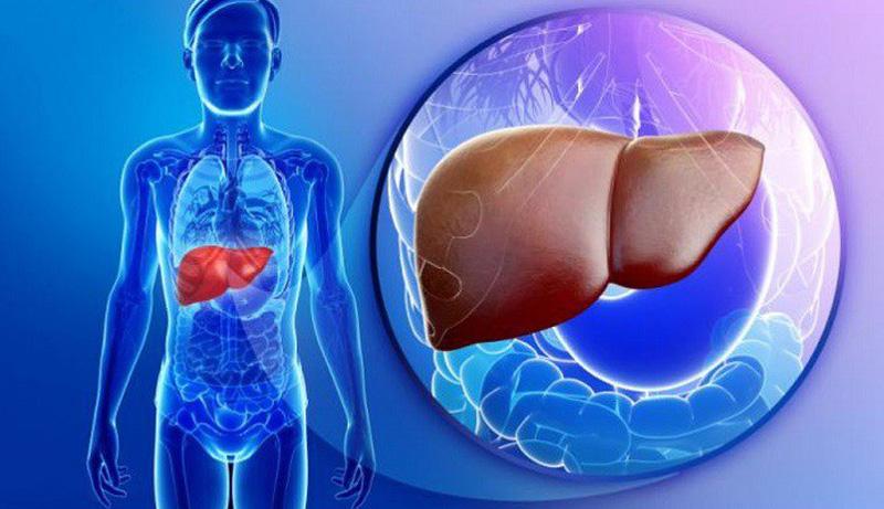 Tìm hiểu về bệnh ung thư gan