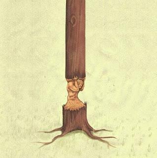 pohon yang berjuang melawan kerasnya hidup
