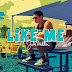 Like Me Lyrics - Jake Miller